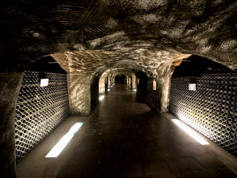 Private Day-Trip to Champagne Region, including several tastings, from Paris (T06-VIP)